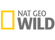 National Geographic Wild thumbnail