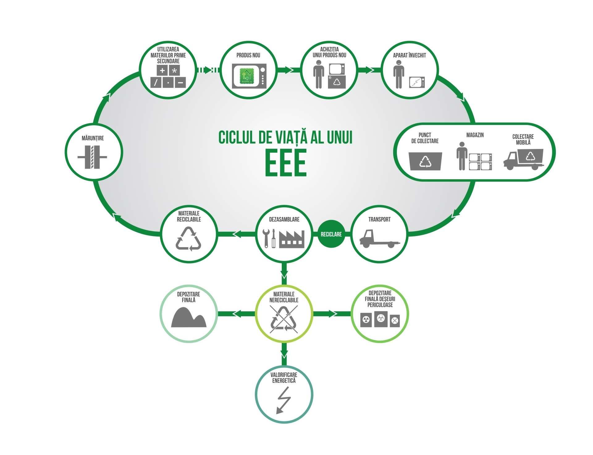 Ciclul de viata EEE